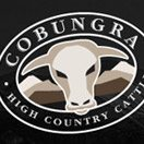 Cobungra High Country Cattle