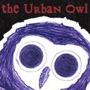 The Urban Owl
