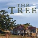 The Tree Film